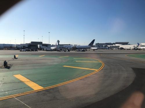 怒美〜(ドビー)のおつかい  サンフランシスコ空港