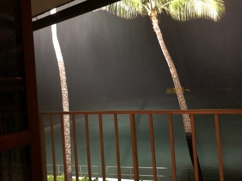 ハワイ 雨