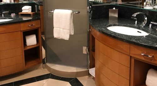 ザ・リッツカールトン東京 シャワールームドア