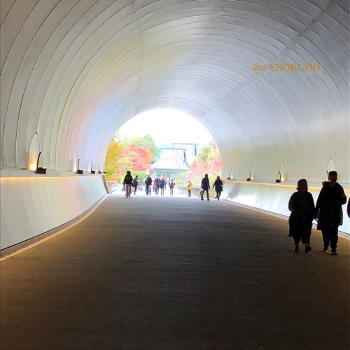 MIHO MUSEUM トンネル1